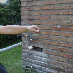 Hausd mmung sanierung schimmel entfernen trockeneisreinigung - Feuchte innenwande ...